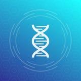 Icona di vettore della catena del DNA, segno illustrazione di stock