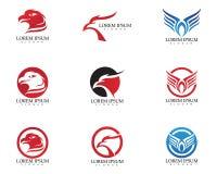 Icona di vettore di Eagle Bird Logo Template del falco Immagini Stock