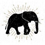 Icona disegnata a mano con l'illustrazione strutturata di vettore dell'elefante Immagini Stock
