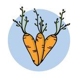 Icona disegnata a mano della carota Verdura del fumetto Prodotto vegetariano sano Verdura fresca del mercato dell'azienda agricol Immagini Stock Libere da Diritti