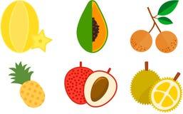 Icona esotica della frutta Fotografie Stock Libere da Diritti