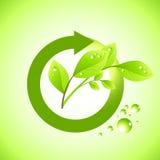 Icona fresca della pianta illustrazione di stock