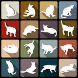 Icona piana del gatto Immagini Stock Libere da Diritti