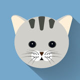 Icona piana del gatto dell'animale domestico con ombra lunga Immagine Stock