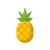 Icona piana dell'ananas Fotografie Stock Libere da Diritti