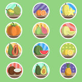 Icona piana della frutta tropicale Immagine Stock
