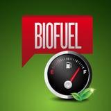 Icona rinnovabile del combustibile biologico Fotografia Stock Libera da Diritti
