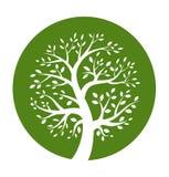 Icona rotonda dell'albero verde Fotografie Stock