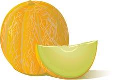 Icona saporita di vettore del melone per la stampa, finestre, luogo Immagine Stock