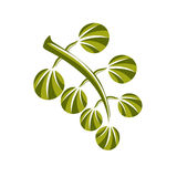 Icona semplice di vettore della foglia della primavera, natura e illus di giardinaggio di tema Immagine Stock Libera da Diritti