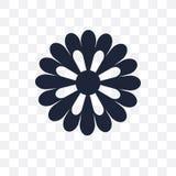 Icona trasparente dell'aster Progettazione di simbolo dell'aster dal collecti della natura illustrazione vettoriale