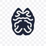 Icona trasparente di vista superiore del cervello Desig superiore di simbolo di vista del cervello royalty illustrazione gratis