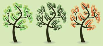 Icona variopinta dell'albero Fotografia Stock Libera da Diritti