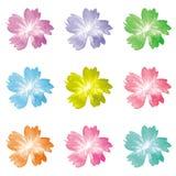 Icona variopinta della flora 9 Immagini Stock Libere da Diritti