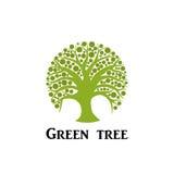 Icona verde del cerchio dell'albero Fotografia Stock Libera da Diritti