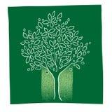 Icona verde dell'albero, illustrazione di disegno a mano libera Fotografia Stock Libera da Diritti