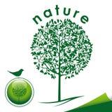 Icona verde della siluetta dell'albero Immagini Stock