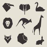 Icone animali Fotografia Stock Libera da Diritti