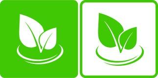 Icone con la foglia verde Fotografia Stock