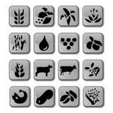 Icone d'agricoltura lucide del raccolto Immagini Stock