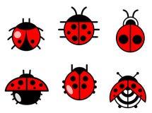 Icone degli scarabei e dei Ladybugs impostate illustrazione vettoriale