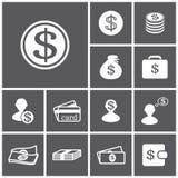 Icone dei soldi Immagini Stock Libere da Diritti