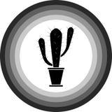 Icone del cactus nei cerchi su un fondo bianco royalty illustrazione gratis