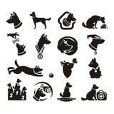 Icone del documento delle collezioni illustrazione di stock