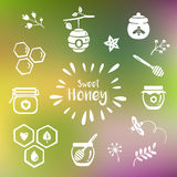 Icone del miele di estate Immagine Stock Libera da Diritti