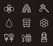 Icone del miele e dell'ape Immagini Stock