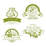 Icone del modello del prodotto vettoriale dell'olio d'oliva messe Immagine Stock