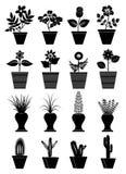 Icone del vaso di fiore Immagini Stock Libere da Diritti