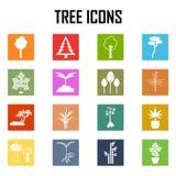 Icone dell'albero impostate Illustrazione di vettore Fotografie Stock Libere da Diritti