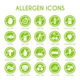 Icone dell'allergene messe Fotografia Stock Libera da Diritti