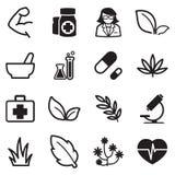 Icone dell'erba Immagine Stock