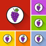 Icone dell'uva con ombra lunga Fotografie Stock