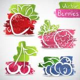Icone della frutta Fotografia Stock