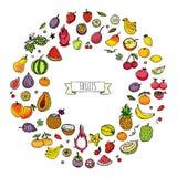 Icone della frutta impostate Fotografie Stock