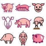Icone della pancetta affumicata e del maiale Fotografia Stock