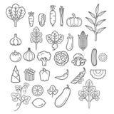 Icone delle verdure Illustrazione di vettore royalty illustrazione gratis