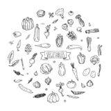 icone delle verdure impostate Immagini Stock Libere da Diritti