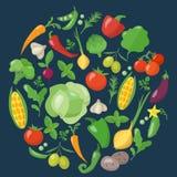 Icone delle verdure messe nello stile piano Fotografie Stock Libere da Diritti