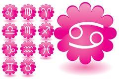 Icone dello zodiaco illustrazione vettoriale