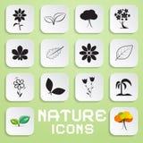 Icone di carta di vettore della natura messe con i fiori Fotografie Stock Libere da Diritti