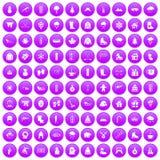 100 icone di inverno messe porpora illustrazione vettoriale