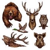Icone di schizzo di vettore degli uccelli degli animali selvatici Immagine Stock