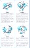 Icone di vettore della vongola e del polipo, del granchio e del pettine illustrazione vettoriale