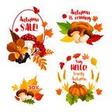 Icone di vettore di acquisto di sconto di vendita di autunno messe illustrazione di stock