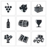 Icone di vettore di produzione vinicola messe Fotografia Stock