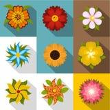 Icone differenti messe, stile piano dei fiori royalty illustrazione gratis